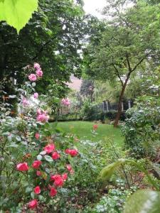Beautiful gardens near apartments